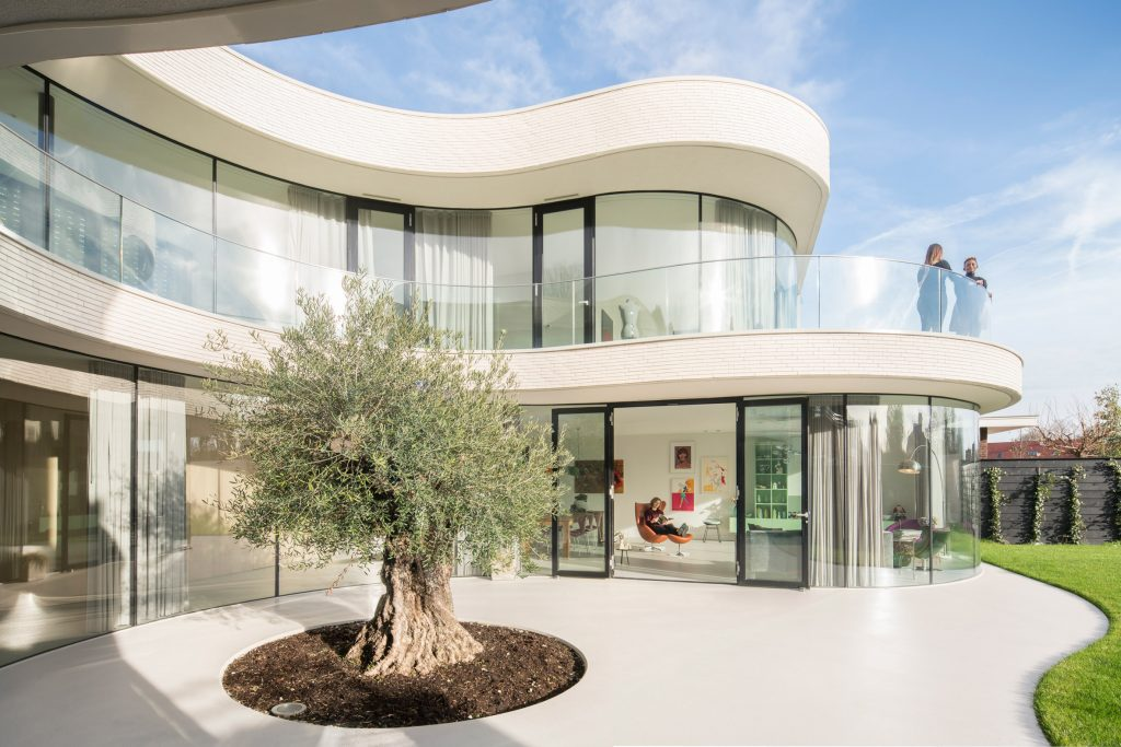 Contemporary house around a mature olive tree (12)